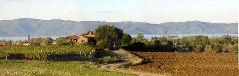 Casaglia, Lago Trasimeno. Umbria.