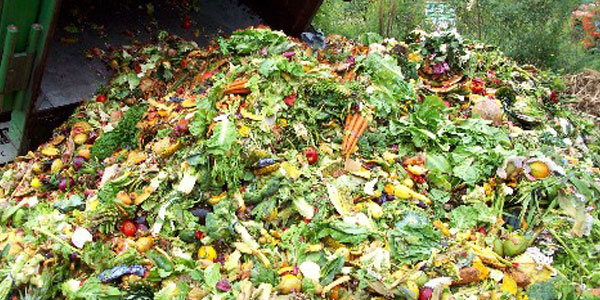 Food waste – what we can all do about it
